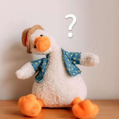 ins网红加油鸭公仔毛绒玩具草帽小白鸭黄娃娃可爱萌生日礼物女生主图