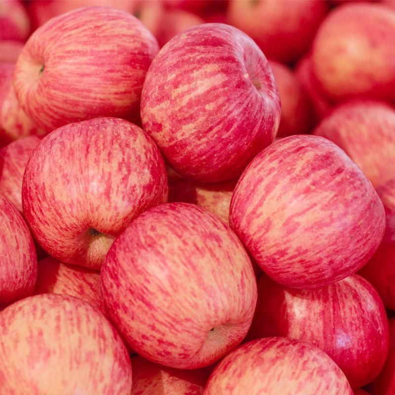 新鲜红富士苹果5斤