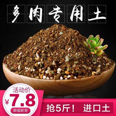 进口多肉土植物专用营养土多肉颗粒土肉肉土叶插换盆土泥炭土包邮