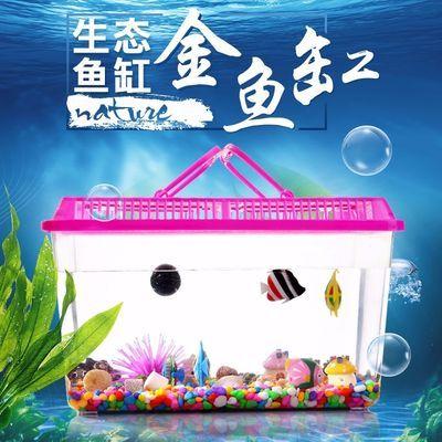 大号透明手提宠物饲养盒 塑料金鱼缸饲养养乌龟缸盒 封闭式盒包邮