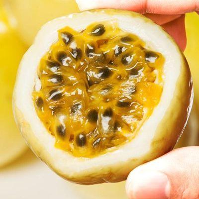黄金百香果5斤包邮大果现摘特级黄色皮新鲜热带水果西番莲白香果