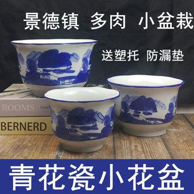 青花瓷小花盆陶瓷景德镇多肉植物绿植绿萝托盘中国风古典特价清仓