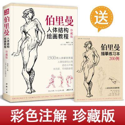 珍藏版【送描摹本】伯里曼人体结构教学 人物速写入门基础