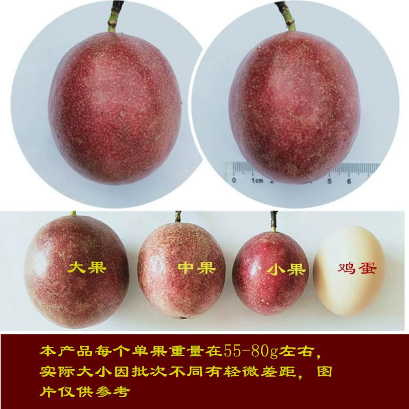 百香果批发新鲜水果新鲜广西百香果5斤非黄金百香果10斤鸡蛋果3斤_3