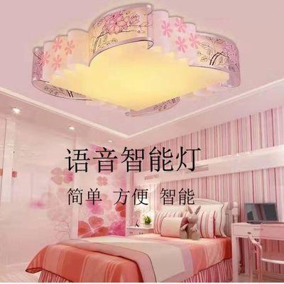 网红爆款 离线智能语音LED圆形卧室灯吸顶灯现代简约客厅灯温馨灯