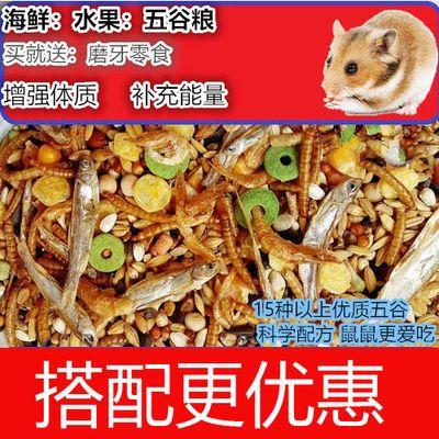 装面包虫干饲料宠物浴沙套餐仓鼠用品仓鼠粮食豪华水果海鲜主粮桶