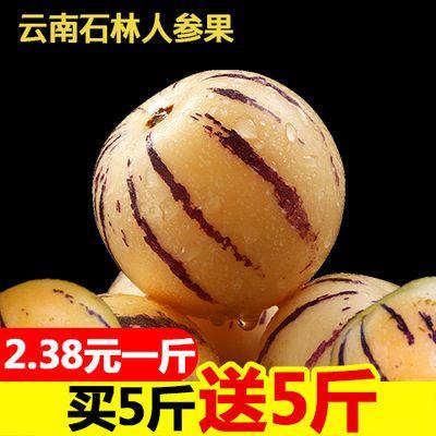 【超好吃】云南人参果石林精品人参果水果新鲜现摘多规格选择