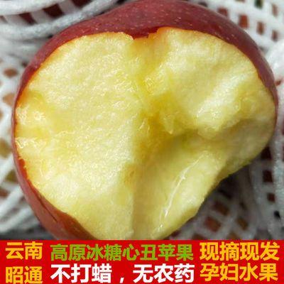 现摘现发云南昭通丑苹果水果批发新鲜冰糖心红富士苹果3/5/10斤