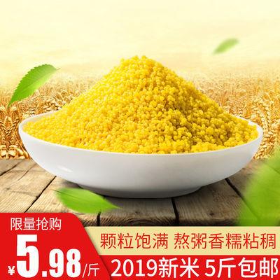 2019新黄小米5斤山西特产沁州小黄米月子米宝宝孕妇辅食粥米油多