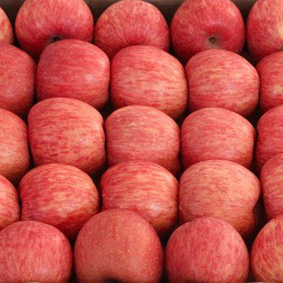 红富士苹果水果新鲜脆甜冰糖心净重5斤带箱10斤产地直发整箱包邮