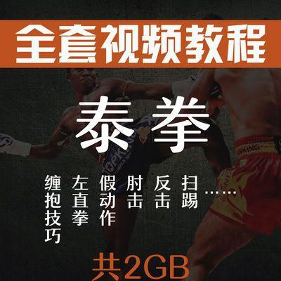 泰拳教学视频自学教程高清中文泰拳零基础入门学习训练搏击格斗术