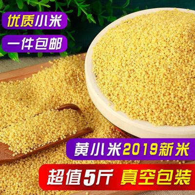 【黄小米2019新米】特价东北农家优质黄小米月子米小米粥食物包邮