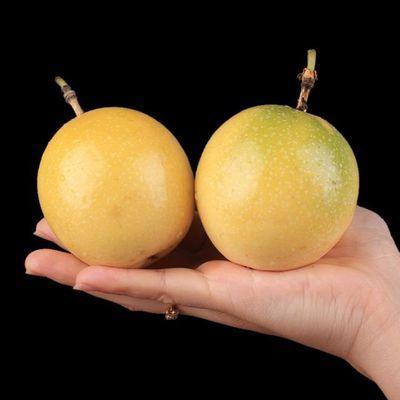 黄金百香果福建武平特产黄色批发孕妇3中大果当季甜新鲜水果5斤