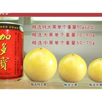 福建武平黄金百香果特一级大果5斤包邮 现摘新鲜黄色皮甜鸡蛋果白