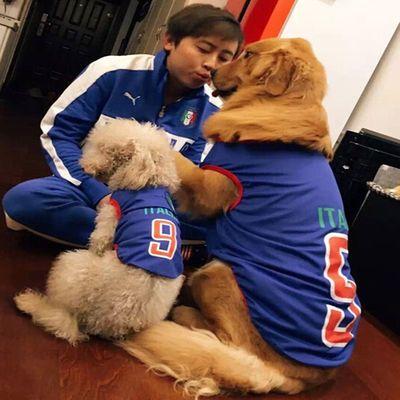 宠物狗狗衣服夏款薄款凉快透气背心网眼篮球服世界杯金毛萨摩大型