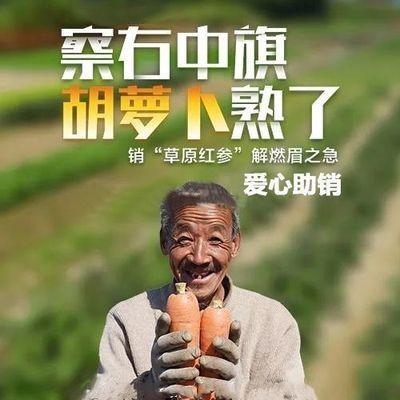 内蒙古胡萝卜带箱5/10斤生吃新鲜水果萝卜胡萝卜即食蔬菜甜脆红心