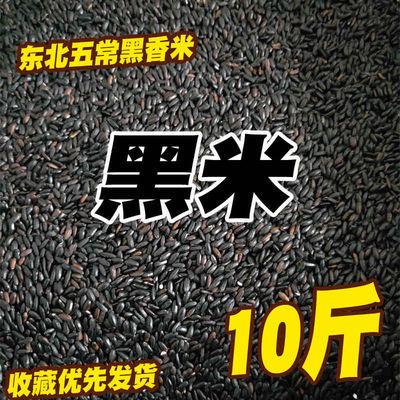 19年新东北五常黑米长粒香五谷杂粮紫米散装农家自产大米10斤5斤