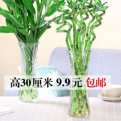 简约玻璃花瓶六角透明大号水培富贵竹百合鲜花插花瓶桌面家用客厅