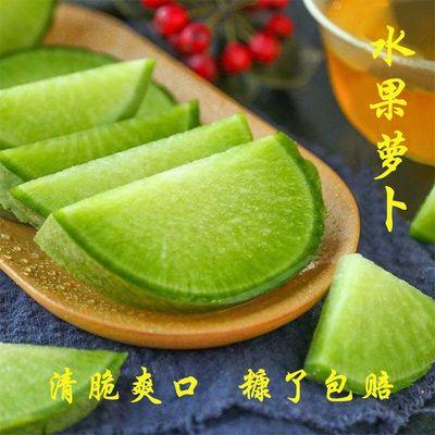 新鲜水果萝卜青萝卜生吃脆甜多汁潍县萝卜新鲜蔬菜非沙窝萝卜5斤