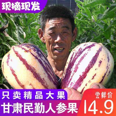 甘肃民勤人参果新鲜当季现摘水果孕妇黄肉非石林人生果应季包邮