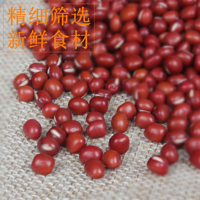 19年大粒红豆东北农家红小豆 大红豆5斤散装非赤小豆五谷杂粮红豆