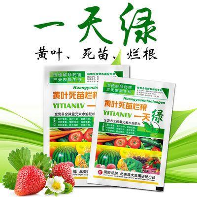 黄叶死苗烂根植物生长调节剂一天绿进口通用叶面肥蔬菜果树花卉