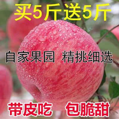 【脆甜红富士】苹果水果新鲜包邮批发当季红富士整箱10斤冰糖心