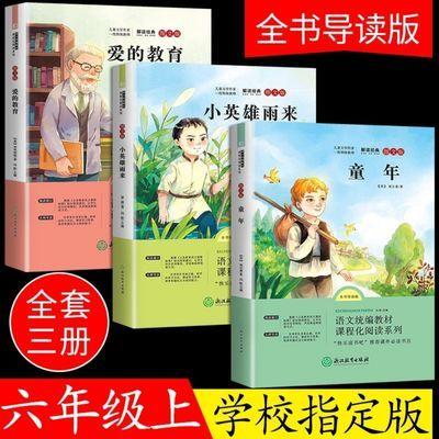 高尔基的童年高尔基爱的教育正版小英雄雨来完整版六年级必读书籍