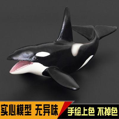 海洋动物仿真塑胶模型海底生物儿童套装玩具虎鲸大白鲨男女孩礼物