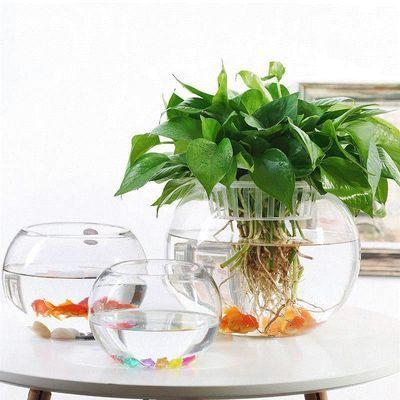 透明玻璃金鱼缸水培绿萝红掌花瓶植物器皿水养花卉盆栽摆件恐龙蛋