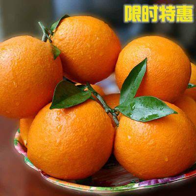 高山脐橙5/10斤装 湖南崀山甜橙子应季新鲜水果孕妇现摘手剥橙