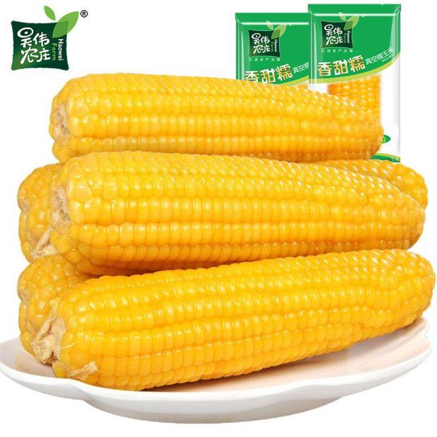昊伟农庄东北糯玉米香甜玉米真空装新鲜玉米黑龙江粘玉米棒多规格