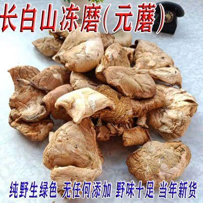 东北特产冻磨 长白山纯野生元蘑干货 黄蘑冬菇 食用菌菇 煲汤炖鸡