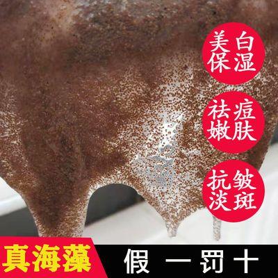 正品天然纯补水保湿美白淡斑祛痘泰国小颗粒海藻面膜粉泥收缩毛孔