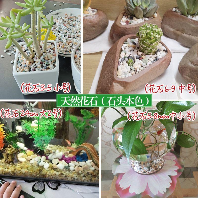 天然雨花石多肉铺面盆栽水培植物铺底鱼缸底砂造景装饰五彩石头的细节图片9