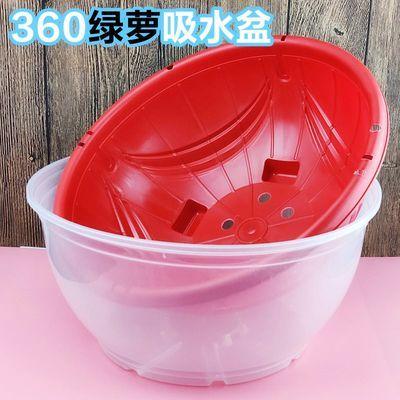 绿萝透明储水盆大号塑料懒人花盆园艺植物盆栽360自动吸水盆圆形