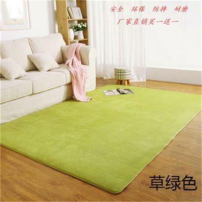 地毯门垫客厅卧室床边床尾长毛丝绒地毯地垫 不掉毛不褪色可定做