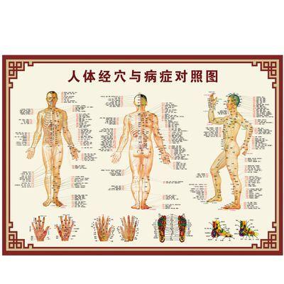 人体穴位图大挂图中医养生男性十二经络穴位男性针灸艾灸拔罐海报