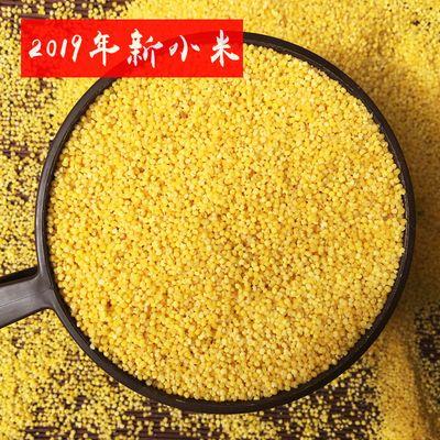 山西特产19年新米黄小米5斤 天然有机小黄米吃的杂粮小米熬粥养胃