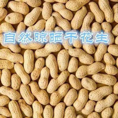 【19年新鲜花生】原味炒熟花生生花生带壳花生米坚果零食铁锅