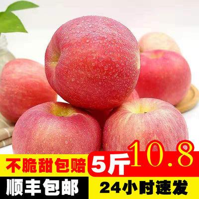 【不满意包赔】山西红富士苹果冰糖心应季新鲜水果5/10斤包邮整箱