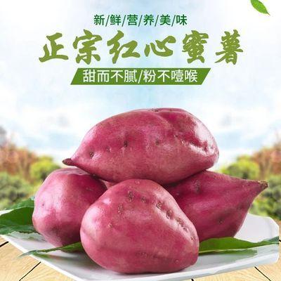 热卖新鲜红薯地瓜红心蜜薯3斤6-8个大果新鲜番薯板栗薯批发非紫薯