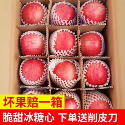 【冰糖心】陕西红富士苹果水果带箱5/10斤新鲜孕妇可吃批发丑苹果