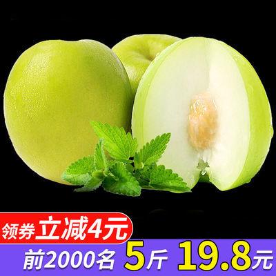 【现摘现发】台湾牛奶枣大青枣贵妃密枣孕妇冬枣脆甜新鲜水果3斤