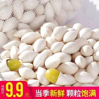 白果银杏包邮新鲜白果干货生银杏果仁带壳百果鲜生徐州特产送食谱