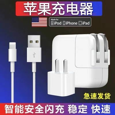 苹果ipad充电器mini/Air/2/3/4快充数据线iPhone6/7/8plus充电头