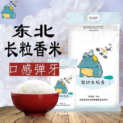 【2019年新米】东北长粒香米10斤农家长粒大米非五常稻花香大米
