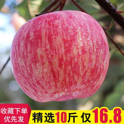 新鲜水果红富士苹果脆甜多汁丑苹果孕妇水果带箱10斤装非冰糖心主图