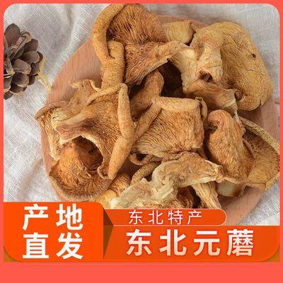 大姐农庄东北19年新元蘑250g特产干货农家自产元蘑小鸡炖蘑菇500g