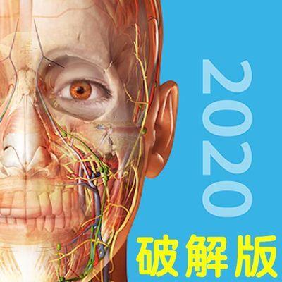 2020版人体解剖学图医学医疗学习安卓苹果版APP破解版专业版软件